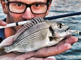 Light Rock Fishing: emozioni senza fine!