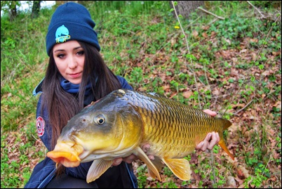BASI DEL CARPFISCHING C.P.O.L Passione pesca