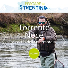 È nato Pescare in Trentino.it!